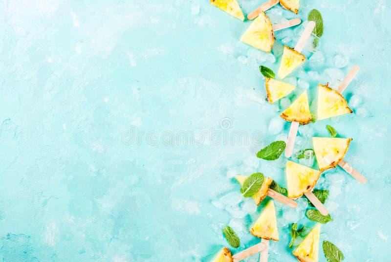 菠萝冰棍儿棍子 库存照片
