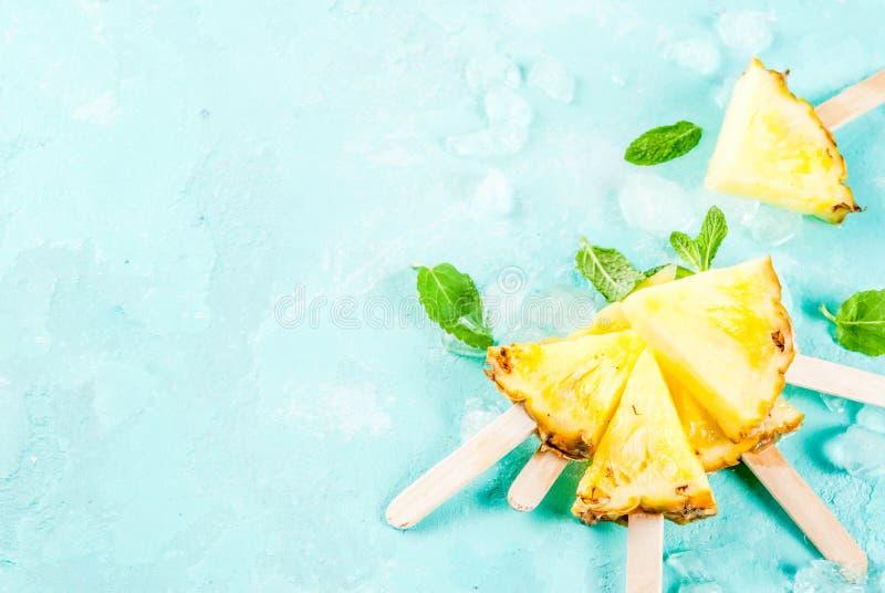 菠萝冰棍儿棍子 库存图片