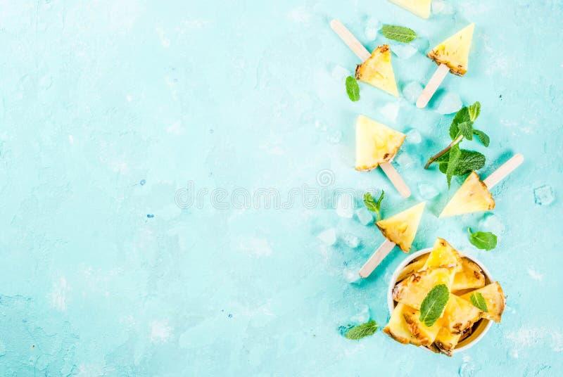 菠萝冰棍儿棍子 免版税库存图片