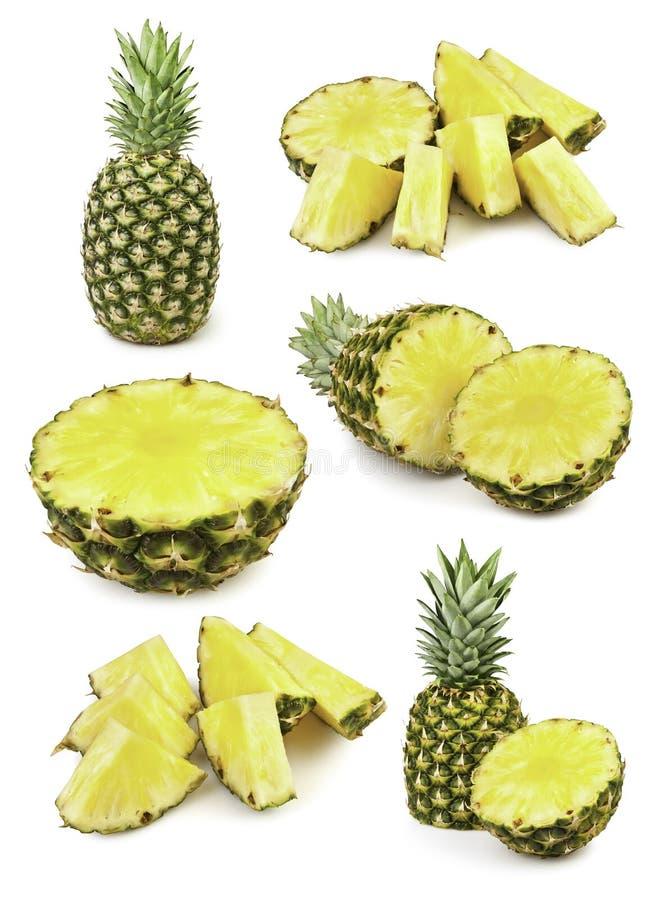 菠萝剪切 库存照片