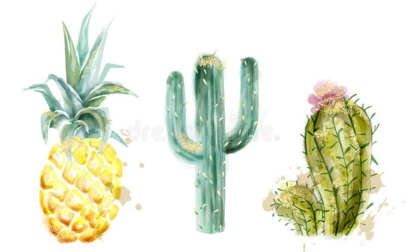 菠萝和仙人掌集合传染媒介水彩 异乎寻常的热带收藏绘了样式 向量例证