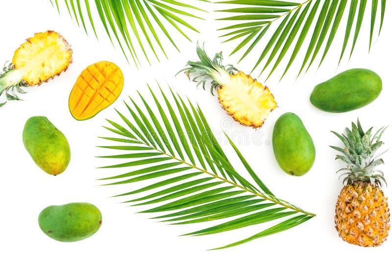 菠萝和芒果的热带样式结果实与在白色背景的棕榈叶 平的位置,顶视图 热带概念 免版税库存图片