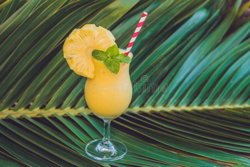 菠萝和菠萝圆滑的人以增殖比为背景 库存图片