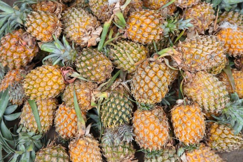 菠萝在市场上待售 库存图片