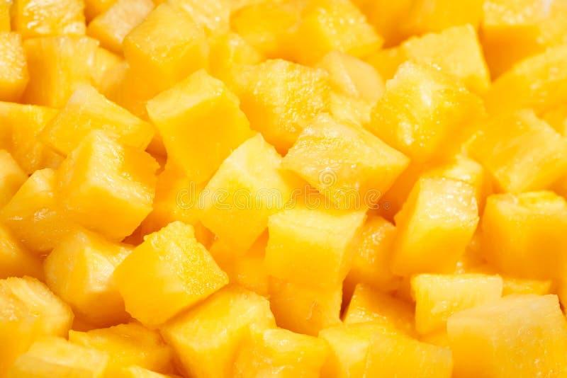 菠萝大块 库存照片