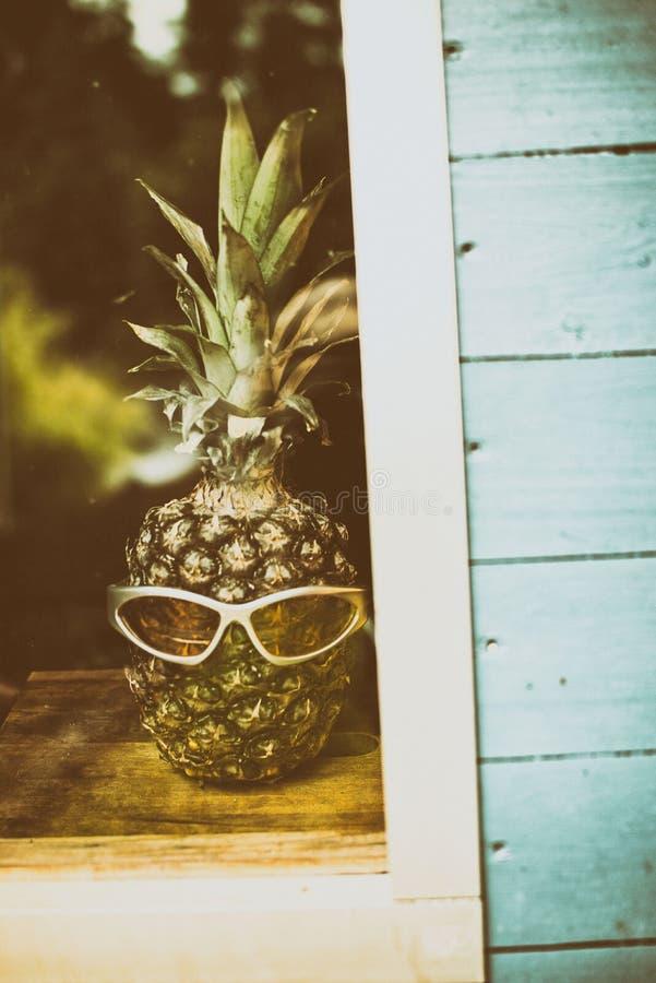 菠萝头 库存图片