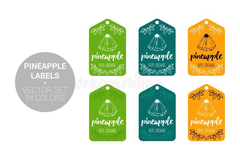 菠萝果子Eco标签导航在绿色,深绿的集合和橘黄色 库存例证