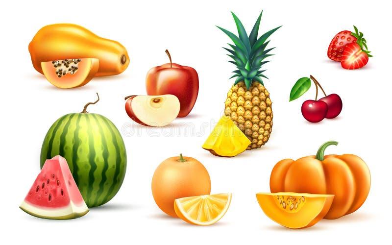 菠萝番木瓜西瓜苹果异乎寻常的果子集合 皇族释放例证