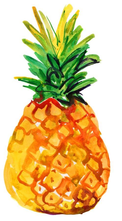 菠萝的水彩例证 图库摄影