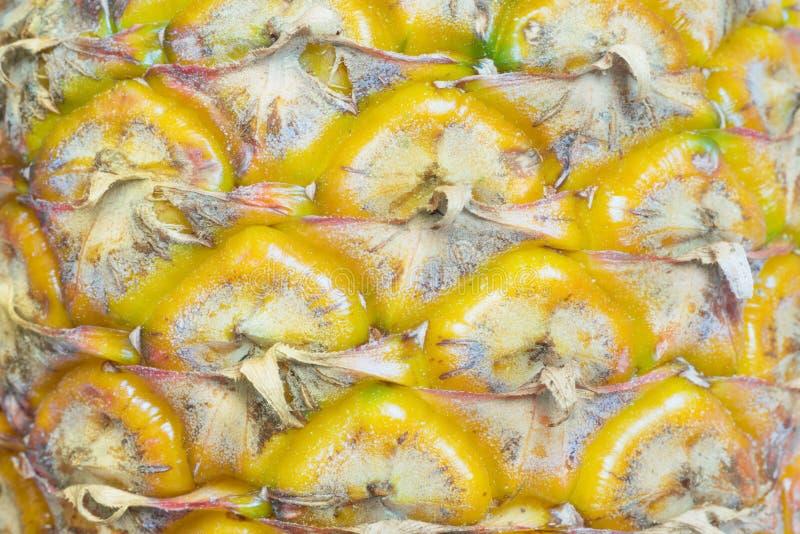 菠萝皮肤纹理  库存照片