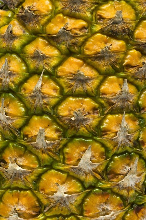 菠萝皮肤纹理 免版税库存照片