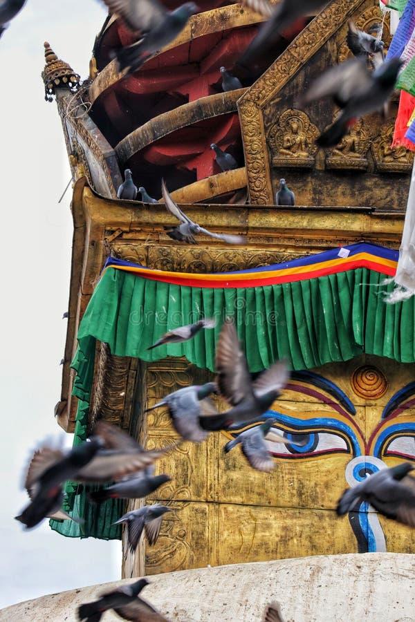 菩萨的眼睛在尼泊尔 免版税库存图片