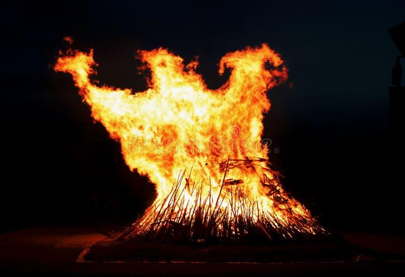 菲尼斯飞行在篝火外面 免版税库存照片