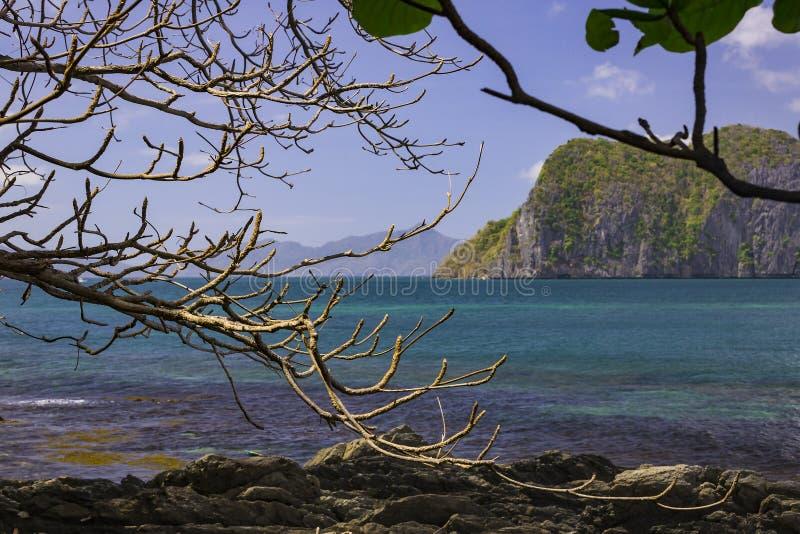菲律宾群岛海岸线 免版税库存图片