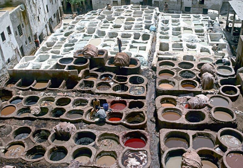 菲斯摩洛哥晒黑的大桶 免版税库存照片