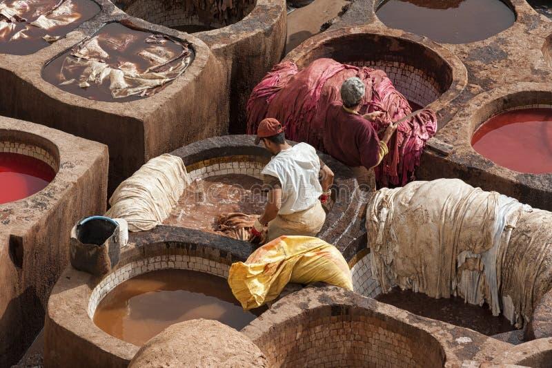 菲斯,摩洛哥- 2017年2月20日:工作在油漆孔内的人在著名Chouara皮革厂在菲斯麦地那  免版税库存图片