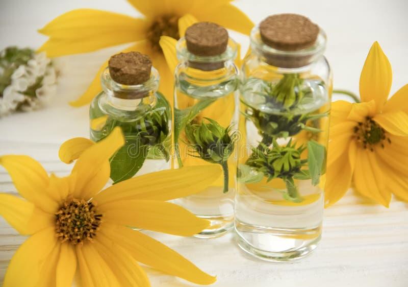 萃取物,花,成份瓶自然草本芳香疗法白色木背景 免版税图库摄影