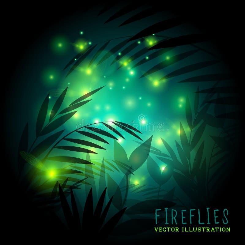 萤火虫和森林在晚上 皇族释放例证