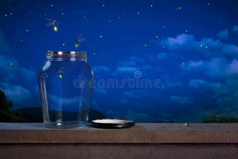 萤火虫晚上 免版税库存照片