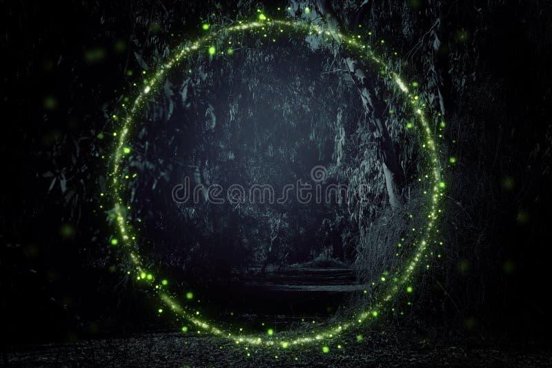 萤火虫飞行的抽象和不可思议的图象在夜森林童话概念的 免版税库存图片