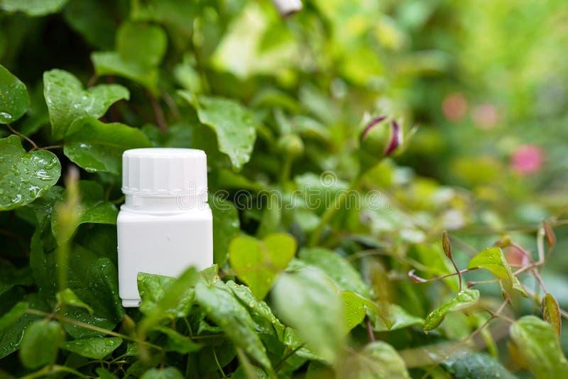 营养在自然背景的维生素容器与拷贝空间 r 免版税图库摄影
