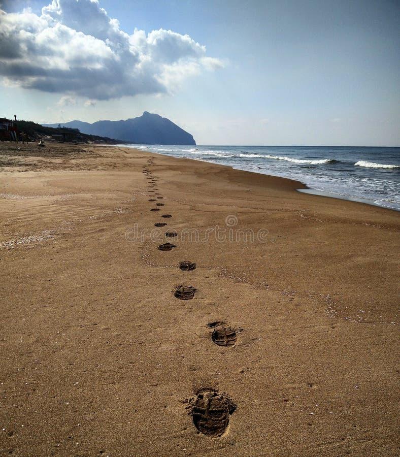 萨包迪亚海岸 免版税库存照片