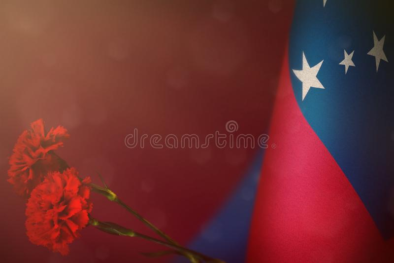 萨摩亚旗子为退伍军人荣誉或与两朵红色康乃馨花大模型的阵亡将士纪念日 对战争概念的萨摩亚英雄的荣耀 免版税库存照片