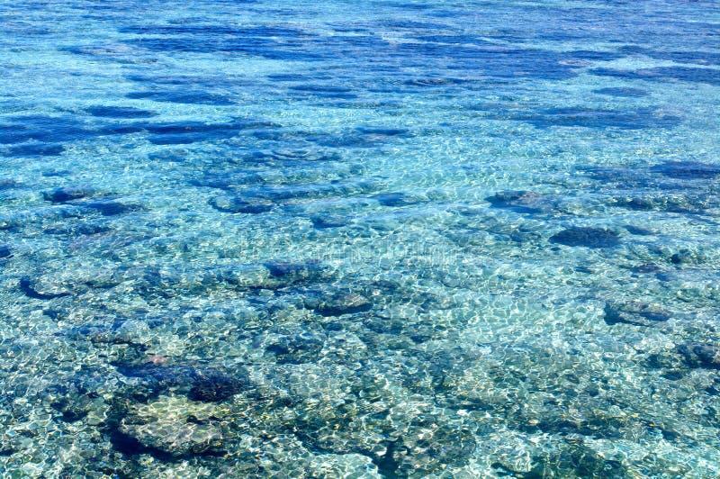 萨摩亚的清楚的水 免版税库存图片
