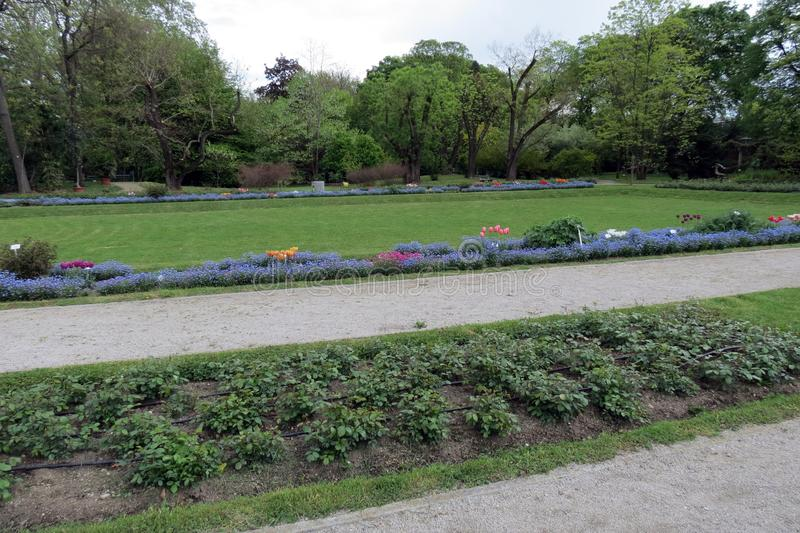 萨格勒布植物园 库存照片