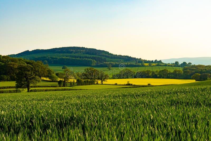 萨罗普郡国家边的不同的颜色 风景 免版税图库摄影