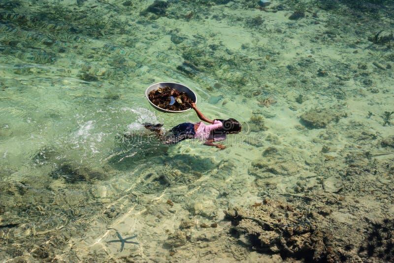 萨马Bajau's孩子在透明的海洋游泳 图库摄影