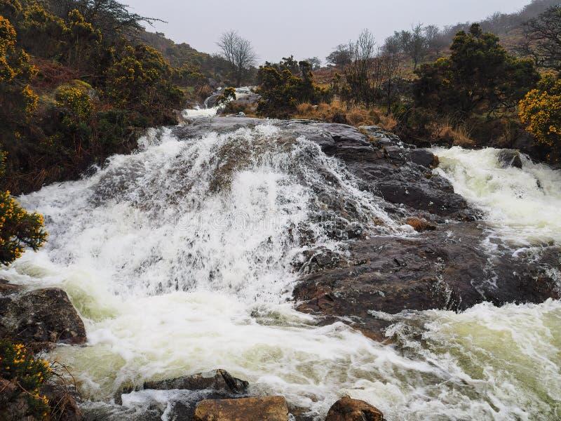 落下在岩石的水通过红ven溪,达特穆尔国立公园,德文郡,英国谷  免版税库存照片