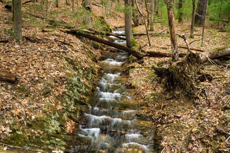 落下的小河在Douthat国家公园, VA,美国 图库摄影