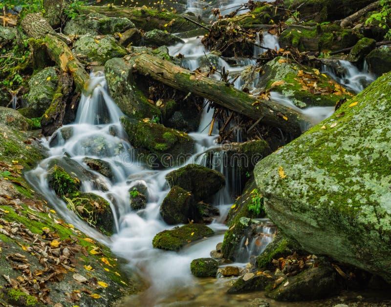 落下的瀑布在弗吉尼亚,美国蓝岭山脉  免版税库存图片