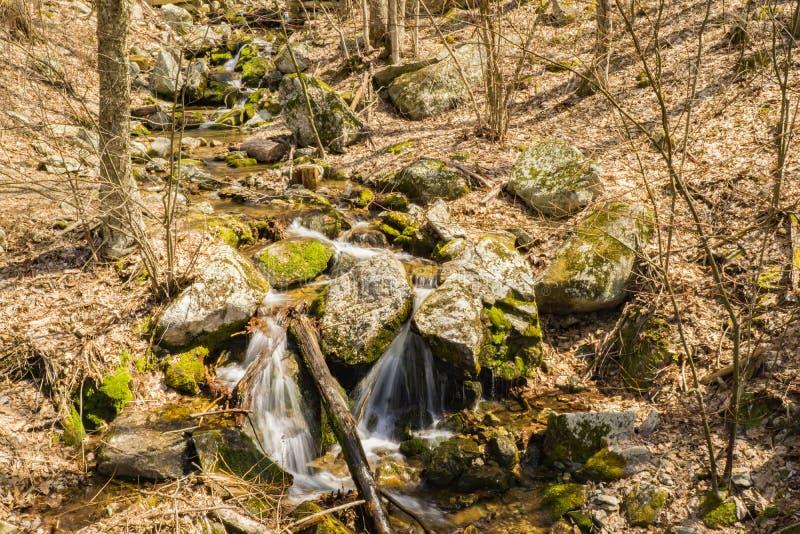 落下的瀑布在蓝岭山脉 免版税图库摄影