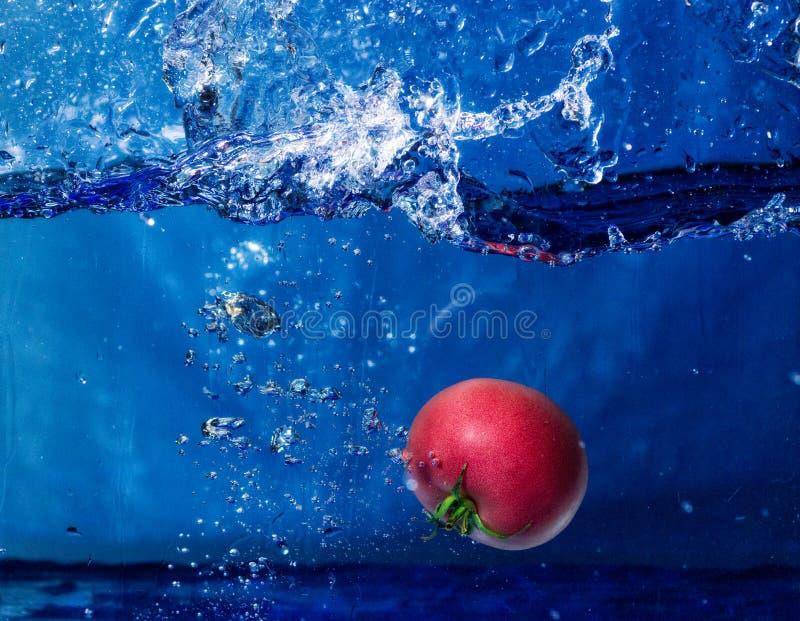落入与飞溅的水的蕃茄 免版税库存图片