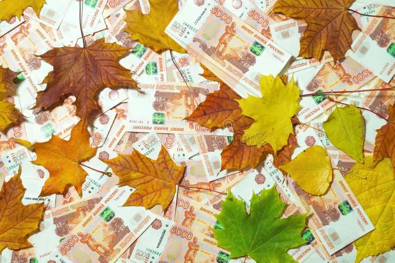 落叶和五张第一千个张票据钞票背景  百万俄罗斯卢布 下跌的货币路线的概念 库存图片