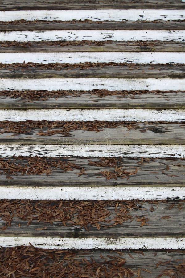落叶和古老台阶 免版税图库摄影