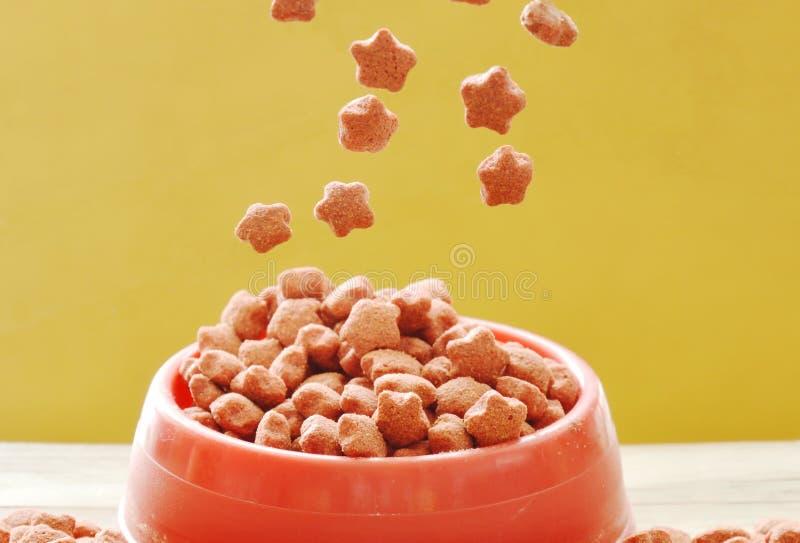 落在红色塑料宠物碗的狗食五谷 免版税库存照片