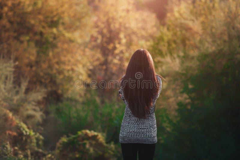 落在非常美丽的女孩森林画象的愉快的少妇的秋叶在秋天公园 免版税库存图片