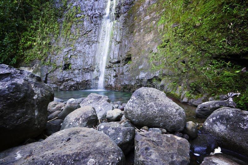 落夏威夷海岛manoa奥阿胡岛池 免版税库存照片