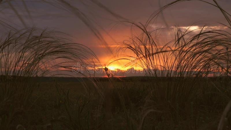 落日的美好的timelapse在领域的 远的雨云和五颜六色的日落云彩在一天空蔚蓝在 免版税库存照片
