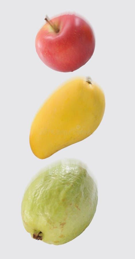 落的果子 免版税库存照片