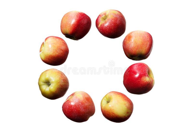 落的红色和黄色苹果圈子在被隔绝的白色背景的 库存照片