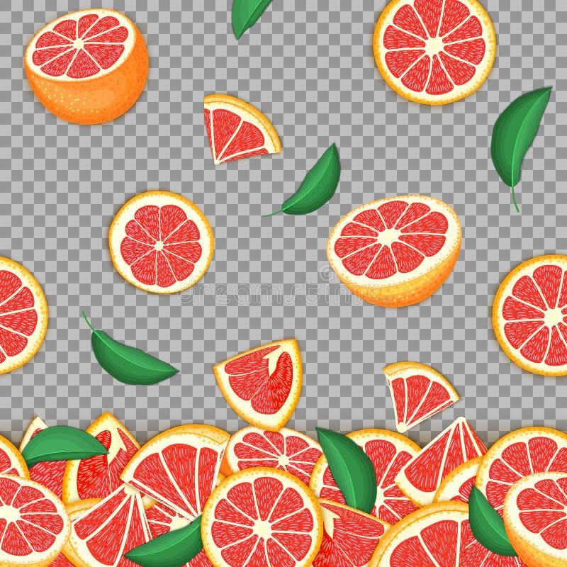 落的红色柚果子热带背景  传染媒介卡片例证 葡萄柚传染媒介无缝的样式柑橘 皇族释放例证