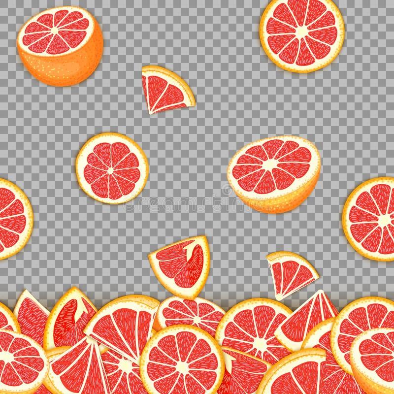 落的红色柚果子热带背景  传染媒介卡片例证 d的葡萄柚传染媒介无缝的样式柑橘水果 向量例证