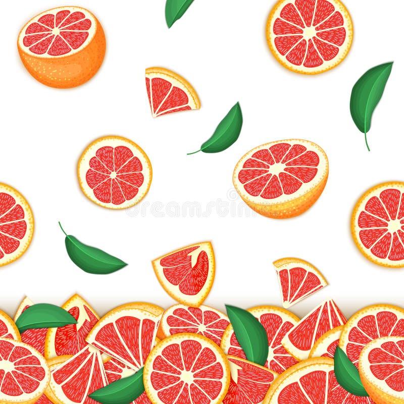 落的红色柚果子热带背景  传染媒介卡片例证 d的葡萄柚传染媒介无缝的样式柑橘水果 皇族释放例证