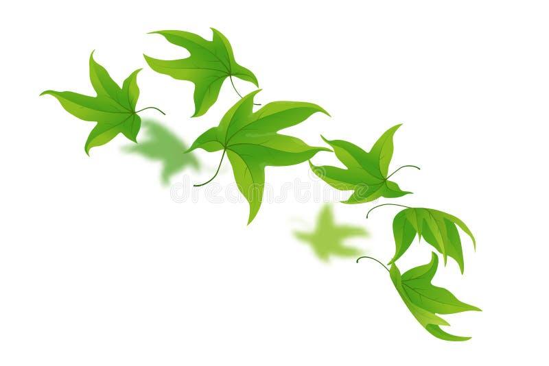 落的绿色叶子 向量例证