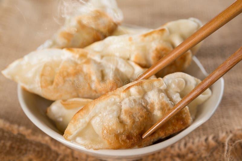 著名亚洲膳食平底锅油煎的饺子 库存照片