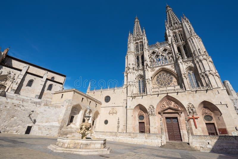 著名地标哥特式大教堂 免版税库存图片